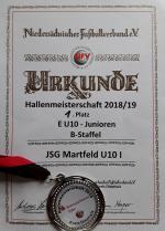 U10 E-Jugend ist Hallenmeister